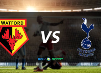watford-vs-spurs